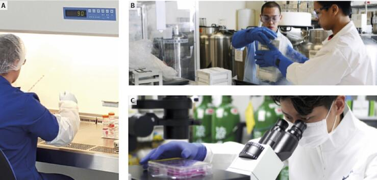 REPROCELL_labs_worldwideREPROCELL has reprogramming technical experts and stem cell laboratories on three continents