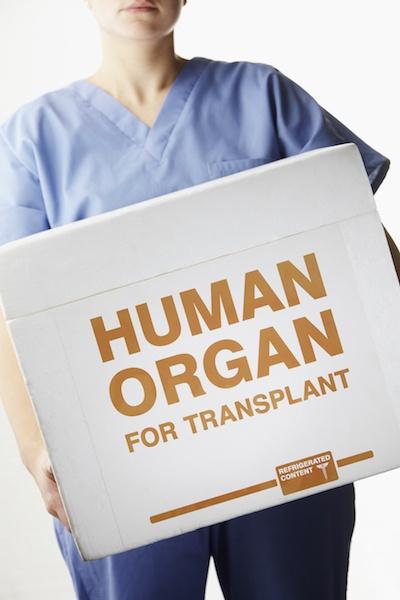 human-organ-transplant-box