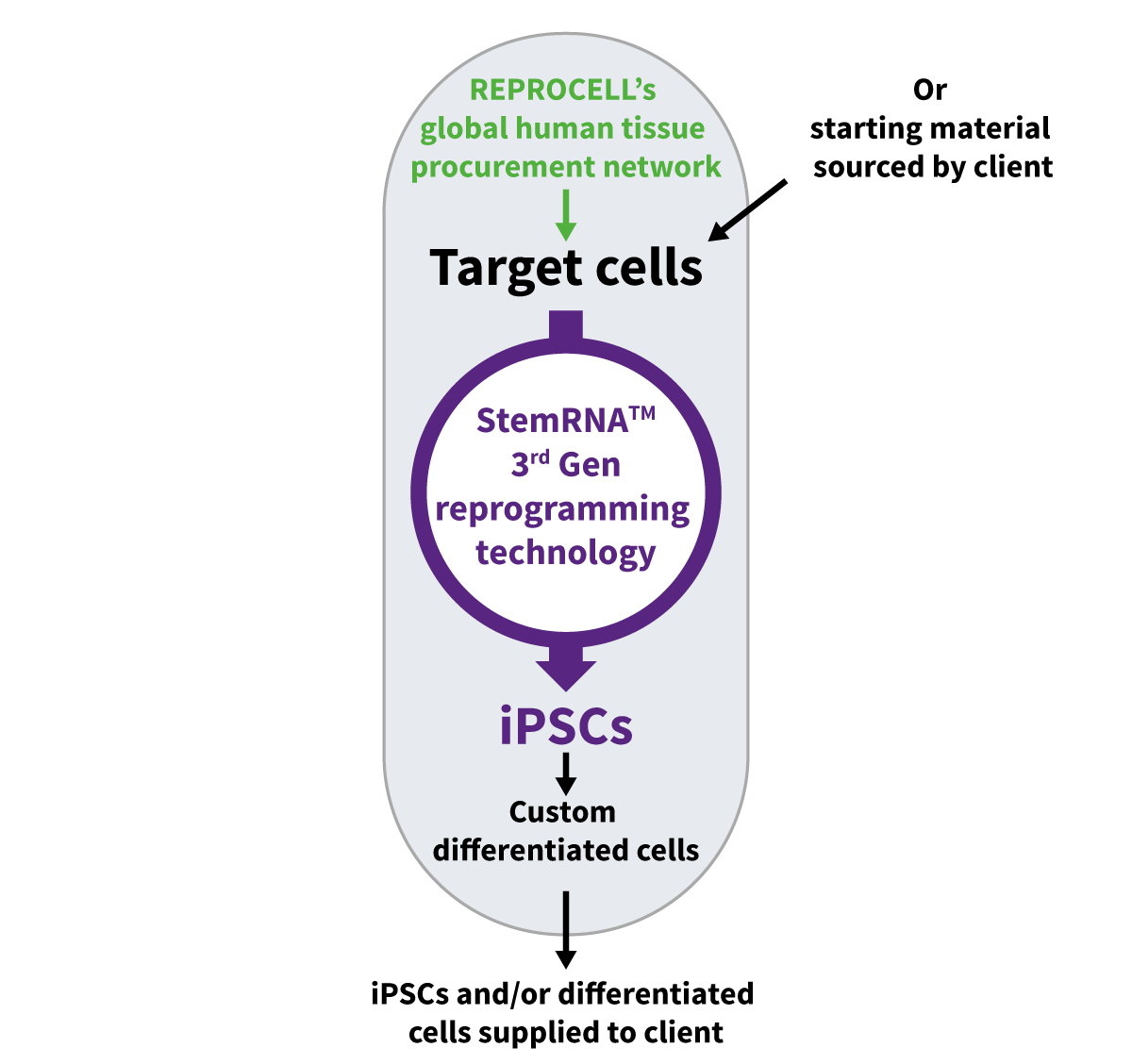 REPROCELL_custom_stem_cell_services_01
