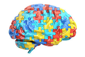 brain-jigsaw