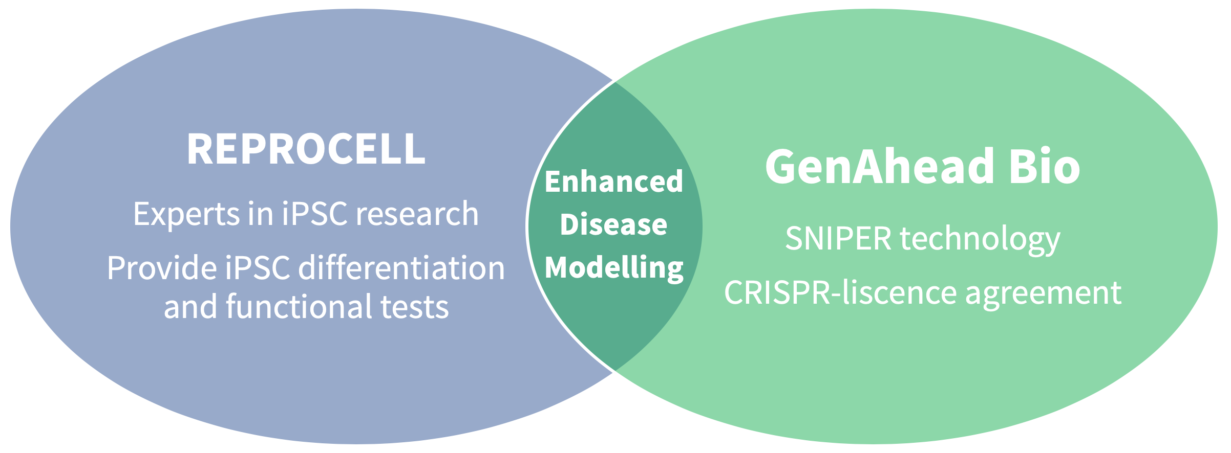 By combining the stem cell expertise of REPROCELL with the gene editing knowledge of GenAhead Bio, researchers can now access CRIPSR-SNIPER gene editing of iPSC cells.